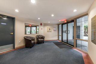 Photo 14: 301 7840 MOFFATT Road in Richmond: Brighouse South Condo for sale : MLS®# R2131216