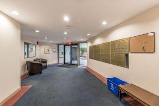 Photo 13: 301 7840 MOFFATT Road in Richmond: Brighouse South Condo for sale : MLS®# R2131216