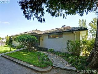 Photo 16: 3980 Locarno Lane in VICTORIA: SE Arbutus Single Family Detached for sale (Saanich East)  : MLS®# 760694