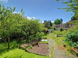 Photo 19: 3980 Locarno Lane in VICTORIA: SE Arbutus Single Family Detached for sale (Saanich East)  : MLS®# 760694