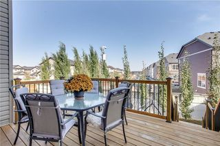 Photo 43: 14 SILVERADO SKIES Crescent SW in Calgary: Silverado House for sale : MLS®# C4140559