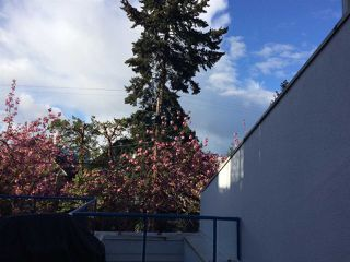 """Photo 15: 1 1038 W 7TH Avenue in Vancouver: Fairview VW Condo for sale in """"THE SANTORINI"""" (Vancouver West)  : MLS®# R2237336"""