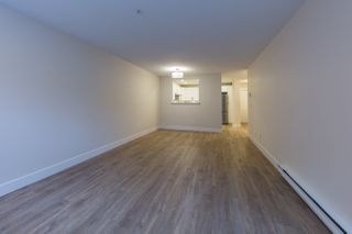 Photo 6: 101 11605 227 Street in Maple Ridge: East Central Condo for sale : MLS®# R2250574