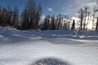 """Photo 17: 8 3000 DAHLIE Road in Smithers: Smithers - Rural Land for sale in """"Mountain Gateway Estates"""" (Smithers And Area (Zone 54))  : MLS®# R2280427"""