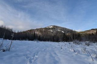 """Photo 22: 8 3000 DAHLIE Road in Smithers: Smithers - Rural Land for sale in """"Mountain Gateway Estates"""" (Smithers And Area (Zone 54))  : MLS®# R2280427"""