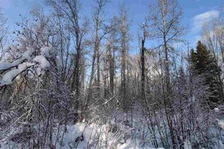 """Photo 26: 8 3000 DAHLIE Road in Smithers: Smithers - Rural Land for sale in """"Mountain Gateway Estates"""" (Smithers And Area (Zone 54))  : MLS®# R2280427"""