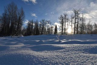 """Photo 16: 8 3000 DAHLIE Road in Smithers: Smithers - Rural Land for sale in """"Mountain Gateway Estates"""" (Smithers And Area (Zone 54))  : MLS®# R2280427"""