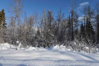 """Photo 19: 8 3000 DAHLIE Road in Smithers: Smithers - Rural Land for sale in """"Mountain Gateway Estates"""" (Smithers And Area (Zone 54))  : MLS®# R2280427"""