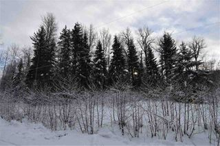 """Photo 34: 8 3000 DAHLIE Road in Smithers: Smithers - Rural Land for sale in """"Mountain Gateway Estates"""" (Smithers And Area (Zone 54))  : MLS®# R2280427"""