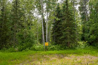 "Photo 6: 8 3000 DAHLIE Road in Smithers: Smithers - Rural Land for sale in ""Mountain Gateway Estates"" (Smithers And Area (Zone 54))  : MLS®# R2280427"