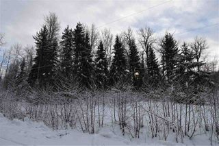 """Photo 35: 8 3000 DAHLIE Road in Smithers: Smithers - Rural Land for sale in """"Mountain Gateway Estates"""" (Smithers And Area (Zone 54))  : MLS®# R2280427"""