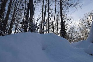 """Photo 31: 8 3000 DAHLIE Road in Smithers: Smithers - Rural Land for sale in """"Mountain Gateway Estates"""" (Smithers And Area (Zone 54))  : MLS®# R2280427"""
