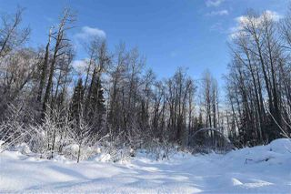 """Photo 20: 8 3000 DAHLIE Road in Smithers: Smithers - Rural Land for sale in """"Mountain Gateway Estates"""" (Smithers And Area (Zone 54))  : MLS®# R2280427"""