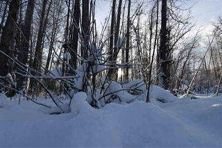 """Photo 30: 8 3000 DAHLIE Road in Smithers: Smithers - Rural Land for sale in """"Mountain Gateway Estates"""" (Smithers And Area (Zone 54))  : MLS®# R2280427"""
