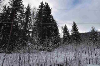 """Photo 37: 8 3000 DAHLIE Road in Smithers: Smithers - Rural Land for sale in """"Mountain Gateway Estates"""" (Smithers And Area (Zone 54))  : MLS®# R2280427"""