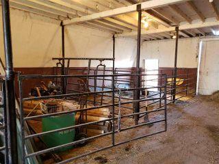 Photo 16: 55020 Range Road 74: Rural Yellowhead House for sale : MLS®# E4117838
