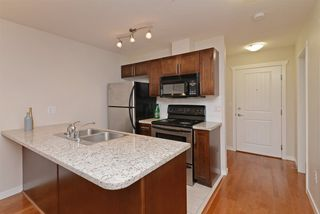 Photo 9: 307 2342 WELCHER Avenue in Port Coquitlam: Central Pt Coquitlam Condo for sale : MLS®# R2283194