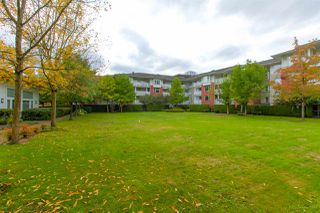 """Photo 18: 116 4723 DAWSON Street in Burnaby: Brentwood Park Condo for sale in """"COLLAGE"""" (Burnaby North)  : MLS®# R2312955"""