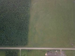 Photo 3: RR74 Twp 514: Rural Parkland County Rural Land/Vacant Lot for sale : MLS®# E4139301