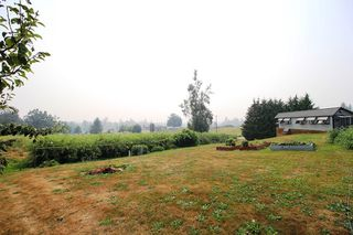 "Photo 13: 28808 STARR Road in Abbotsford: Bradner House for sale in ""Bradner"" : MLS®# R2342118"