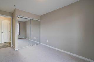 Photo 23: 5206 7335 SOUTH TERWILLEGAR Drive in Edmonton: Zone 14 Condo for sale : MLS®# E4156483