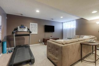 Photo 21: 8 Dunfield Crescent: St. Albert House for sale : MLS®# E4159088