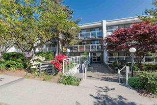 Photo 1: 215 550 ROYAL Avenue in New Westminster: Downtown NW Condo for sale : MLS®# R2385460