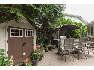 Photo 19: 5124 219A Street in Langley: Murrayville House for sale : MLS®# R2385983