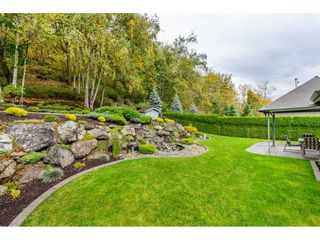 Photo 16: 35857 REGAL Parkway in Abbotsford: Abbotsford East House for sale : MLS®# R2414577
