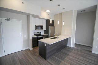 Photo 6: 305 70 Philip Lee Drive in Winnipeg: Crocus Meadows Condominium for sale (3K)  : MLS®# 202000509