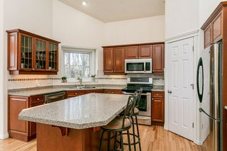 Photo 16: 59 Fountain Creek Drive: Rural Strathcona County House for sale : MLS®# E4188654