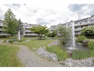 "Photo 20: 203 20217 MICHAUD Crescent in Langley: Langley City Condo for sale in ""Michaud Gardens"" : MLS®# R2442178"