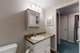 Photo 28: 3858 24 Street in Edmonton: Zone 30 House for sale : MLS®# E4194795