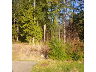 "Photo 3: 3298 BLACKBEAR Way: Anmore Land for sale in ""UPLANDS"" (Port Moody)  : MLS®# V1097585"
