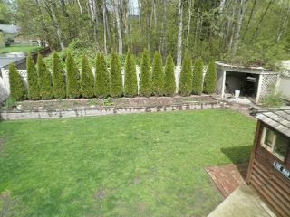 Photo 2: 23843 119A Avenue in Maple Ridge: Cottonwood MR House for sale : MLS®# V1116745