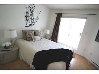 Photo 9: 104 3051 AIREY Drive in Richmond: West Cambie Condo for sale : MLS®# V1140850