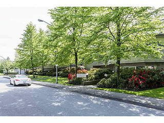 Photo 13: 104 3051 AIREY Drive in Richmond: West Cambie Condo for sale : MLS®# V1140850