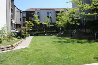 "Photo 19: 409 340 GINGER Drive in New Westminster: Fraserview NW Condo for sale in ""FRASER MEWS"" : MLS®# R2089971"