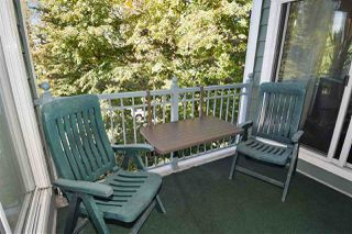 "Photo 12: 303 1199 WESTWOOD Street in Coquitlam: North Coquitlam Condo for sale in ""Lakeside Terrace"" : MLS®# R2117490"