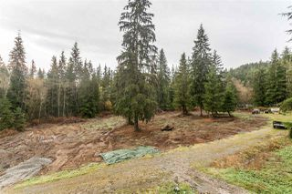 "Photo 13: 29684 DEWDNEY TRUNK Road in Mission: Stave Falls House for sale in ""Stave Lake"" : MLS®# R2122636"