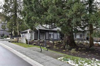 Photo 14: 81 6123 138 Street in Surrey: Sullivan Station Townhouse for sale : MLS®# R2143149