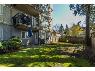 "Photo 19: 106 2581 LANGDON Street in Abbotsford: Abbotsford West Condo for sale in ""Cobblestone"" : MLS®# R2154398"