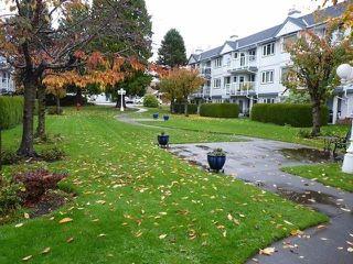 "Photo 1: 114 13965 16 Avenue in Surrey: Sunnyside Park Surrey Condo for sale in ""White Rock Village"" (South Surrey White Rock)  : MLS®# R2187785"