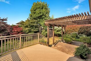 Photo 17: 2229 Lifton Pl in VICTORIA: SE Arbutus Single Family Detached for sale (Saanich East)  : MLS®# 768469