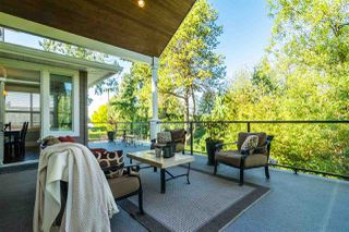 Photo 16: 21941 52 AVENUE in Langley: Murrayville House for sale : MLS®# R2210675
