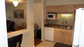 Photo 4: 117 33535 King Road in Abbotsford: Poplar Condo for sale : MLS®# R2242945