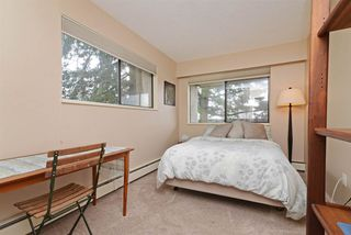 """Photo 14: 107 1040 KING ALBERT Avenue in Coquitlam: Central Coquitlam Condo for sale in """"Blue Mountain Terrace"""" : MLS®# R2278924"""