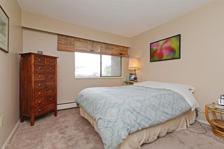 """Photo 11: 107 1040 KING ALBERT Avenue in Coquitlam: Central Coquitlam Condo for sale in """"Blue Mountain Terrace"""" : MLS®# R2278924"""