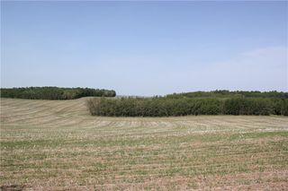 Photo 12: 39103 Highway 20: Sylvan Lake Land for sale : MLS®# C4192272