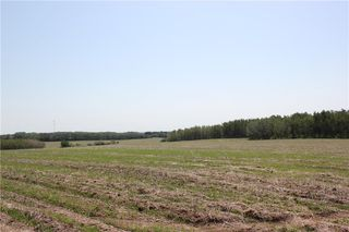 Photo 29: 39103 Highway 20: Sylvan Lake Land for sale : MLS®# C4192272